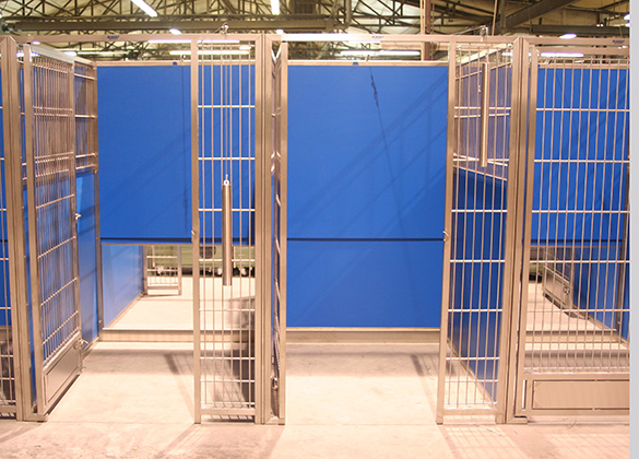 our safe veterinary dog kennel designs with advanced. Black Bedroom Furniture Sets. Home Design Ideas