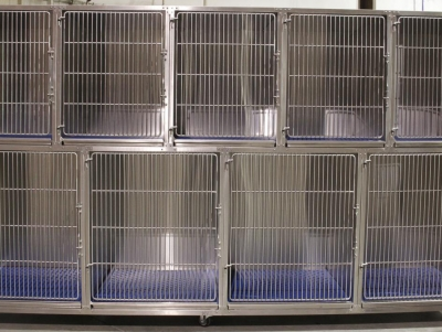 TriStar Vet cage photo: Stackable stainless steel cages shown here with stainless steel rod doors
