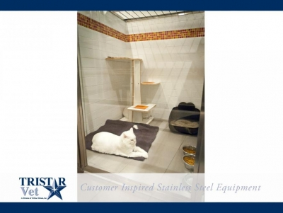 TriStar Vet cat condo photo: This serene, spacious cat condo features stainless steel and glass kennel doors