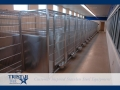 TriStar Vet kennel photo: Your staff will appreciate an efficient stainless steel kennel run like this one