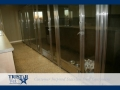 TriStar Vet kennel photo: Little Westies peek through our stainless steel and glass kennel doors