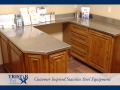 TriStar Vet treatment equipment photo: This u-shape space with stainless steel countertop is super handy