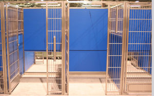 Kennel Guillotine Door